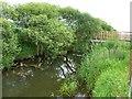 NT1499 : Footbridge across Gairney Water by James Allan