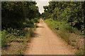 SK6361 : Bilsthorpe cycle track by Richard Croft