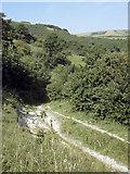 TQ5802 : Lane above Willingdon by Andy Stephenson