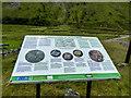 SN8275 : Information Board, Old Gwaith Cwmystwyth Mining Area, Ceredigion by Christine Matthews