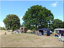 TM0321 : Wivenhoe Summer Fair by Hamish Griffin