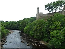 NZ0416 : The River Tees below Barnard Castle by Anthony Parkes