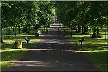 SU4212 : Palmerston Park by Stephen McKay