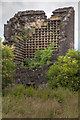 NS8594 : Ruined Dovecot by Doug Lee