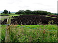 H3975 : Field with turf, Kilmore by Kenneth  Allen