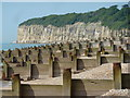 TQ8813 : Groynes, shingle and cliff end by Peter Barr