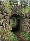 TQ0950 : Archway, Briary Hill, Dick Focks Common (2) by Stefan Czapski