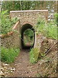 TQ0950 : Bridleway and arch, Briary Hill, Dick Focks Common by Stefan Czapski