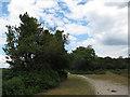 SU2510 : Paths on the edge of Stonard Wood by Stephen Craven