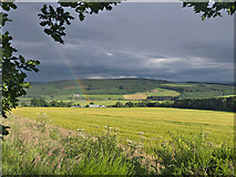 NH6454 : South to Drumderfit Hill from Tullich Wood by Julian Paren