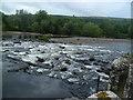 NT5434 : River Tweed by Michael Graham