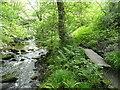 SE0024 : The riverside path approaching Spa Bridge by Humphrey Bolton