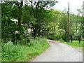SE0024 : Cragg lane at Clough Foot Bridge by Humphrey Bolton