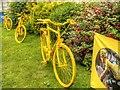 SE6052 : Le Tour de Yorkshire by David Dixon