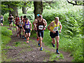 NS9699 : Leaders of the 2014 Dollar Hill Race by Doug Lee