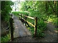 SU6423 : Footbridge over the River Meon by Christine Johnstone