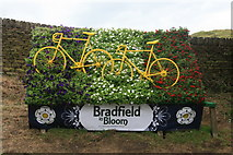 SK2692 : Bradfield in Bloom ready for 'Le Grand Départ' by Graham Hogg