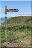 TA2372 : Footpath Signpost, Headland Way, Yorkshire by Christine Matthews