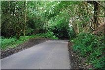 TQ4838 : Beech Green Lane by N Chadwick