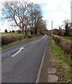 SO8508 : White arrow on the A46 near Painswick by Jaggery