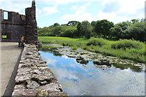 NY0265 : Caerlaverock Castle Moat by Billy McCrorie