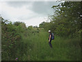 NY5720 : Overgrown bridleway near Strickland Lodge Farm by Karl and Ali