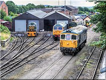 SD8010 : East Lancashire Railway Loco Sheds at Buckley Wells by David Dixon