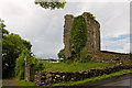 M3128 : Castles of Connacht: Castlegar, Galway (1) by Mike Searle