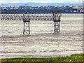 SJ4182 : Liverpool Airport Light Gantry, Mersey Estuary by David Dixon