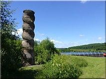 NY6491 : Kielder Column by Russel Wills