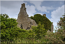 M8937 : Castles of Connacht: Dundonnell, Roscommon (2) by Mike Searle