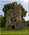 M8062 : Castles of Connacht: Castlecoote, Roscommon (7 of 10) by Mike Searle