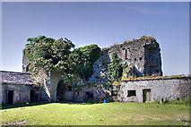 N4239 : Castles of Leinster: Newcastle, Westmeath (1) by Mike Searle