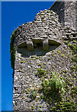 N5231 : Castles of Leinster: Toberdaly, Offaly (3) by Mike Searle