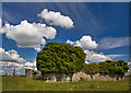N2217 : Castles of Leinster: Killooly, Offaly (2) by Mike Searle