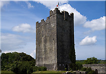 R2884 : Castles of Munster: Dysert O'Dea, Clare (1) by Mike Searle