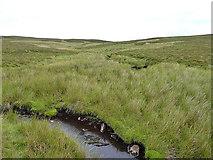 SH7742 : The upper Afon Serw by Richard Law