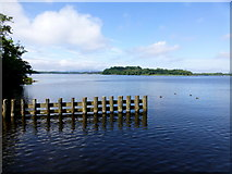 H1860 : Tom's Island, County Fermanagh by Kenneth  Allen
