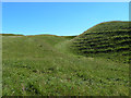 SY5494 : Iron Age hill fort on Eggardon Hill by Oliver Dixon