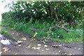 SW7421 : Farm equipment dumped in the long grass by Bill Boaden