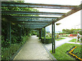 TQ3776 : Brookmill Park:pergola by Stephen Craven
