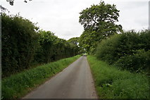 SE6548 : Langwith Stray towards Gill Wood by Ian S
