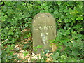 SE1814 : Boundary stone by John Illingworth