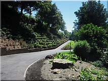 NT9953 : Path and planting, Castle Vale Park by Graham Robson