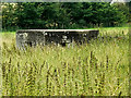 TM3864 : Pillbox near Carlton Park Industrial Estate by Adrian Cable