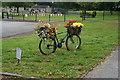 SE2445 : Tour De France Floral  Bike by Ian S
