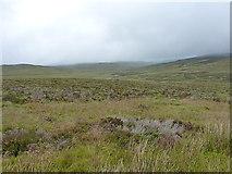 SH7843 : East of Llechwedd Mawr by Richard Law