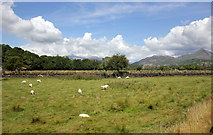 SH6041 : View towards Snowdon from the WHR by Jeff Buck