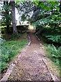 NJ7005 : Path to Midmar Old Kirk by Stanley Howe