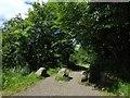 NS5376 : West Highland Way near Craigallian Bridge by Lairich Rig